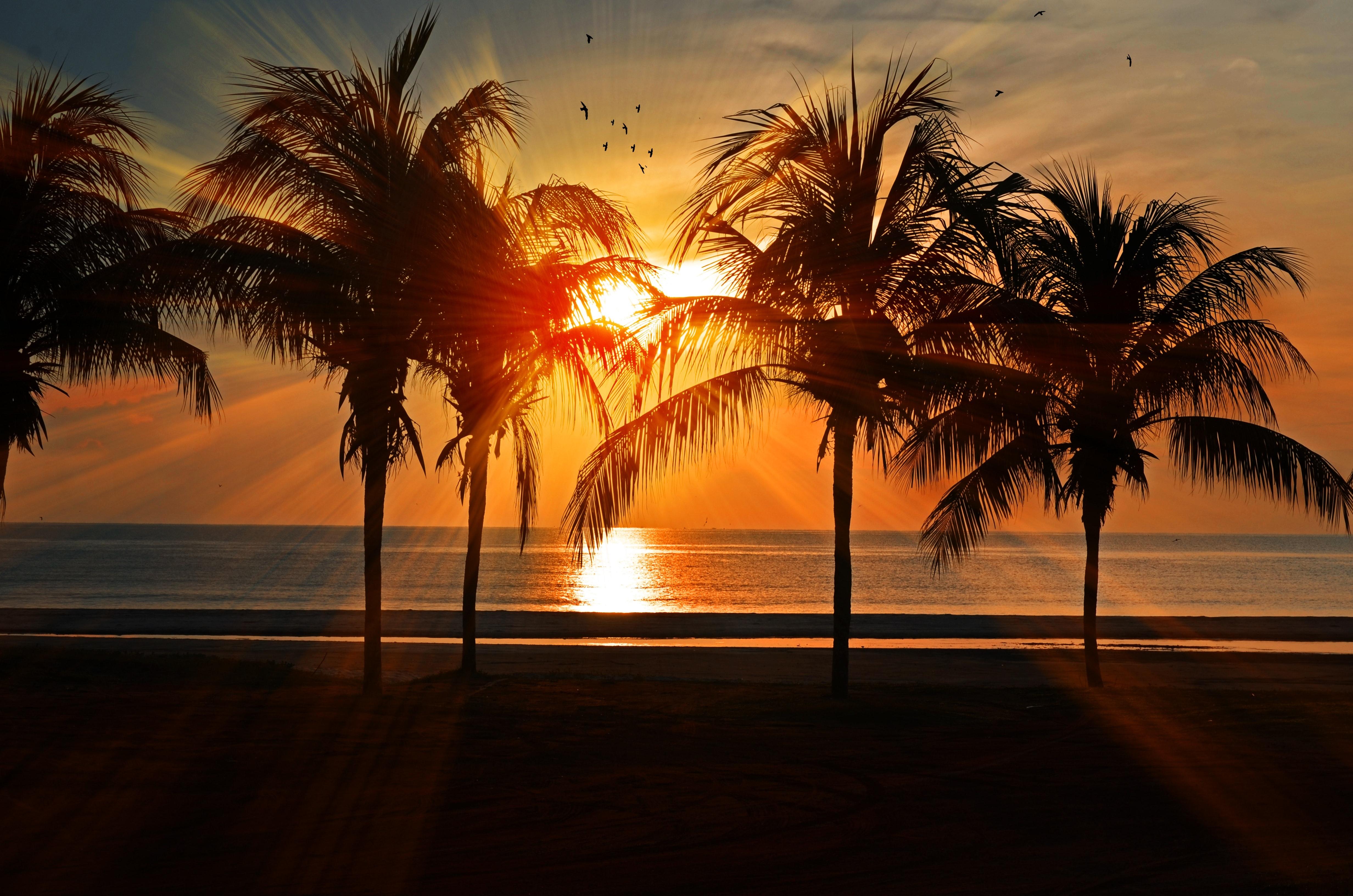 Få dig en på opleveren med din næste ferie