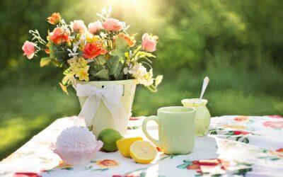 Derfor skal du tage en pause med en kop kaffe i haven